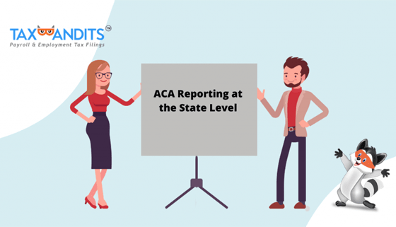 A Guide to ACA Reporting at the State Level